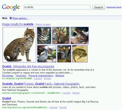 Google Universal Search Images